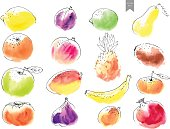 Hand drawn watercolor stains with line art fruit drawings overlayed.