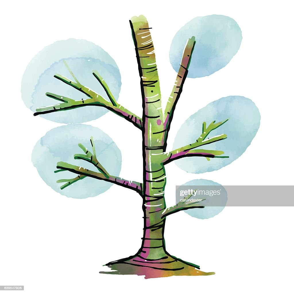 Hand Drawn Watercolor Tree Vector Art | Getty Images