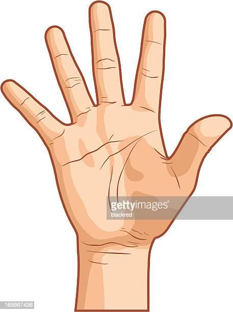 illustrations, cliparts, dessins animés et icônes de main geste numéro cinq - panneau stop