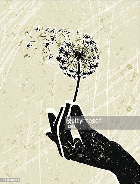 hand holding a delicate dandelion clock - silk screen stock illustrations