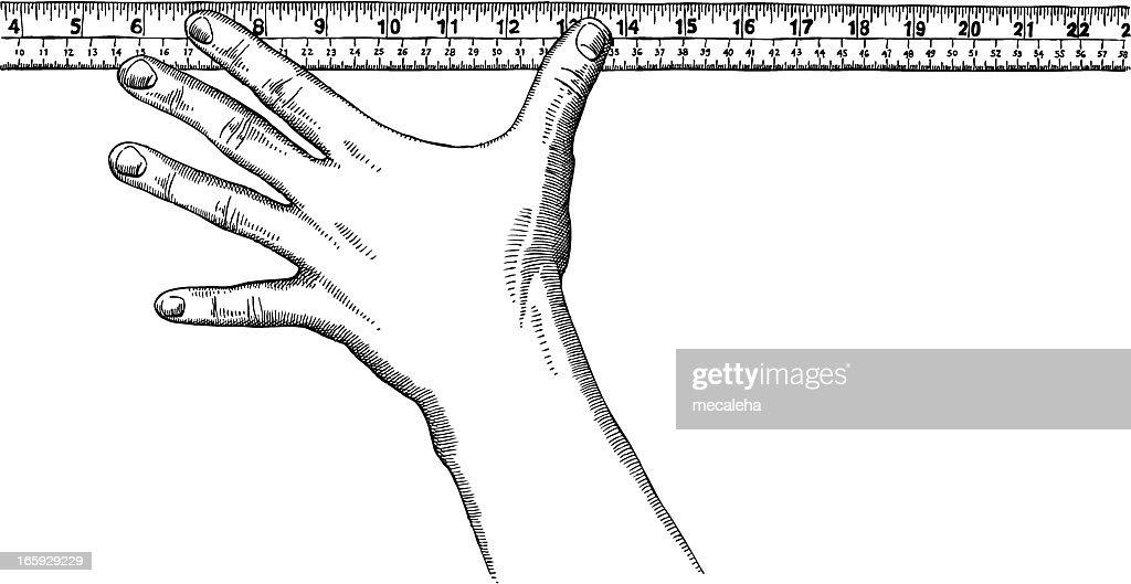 Hand holding a ruler : stock illustration