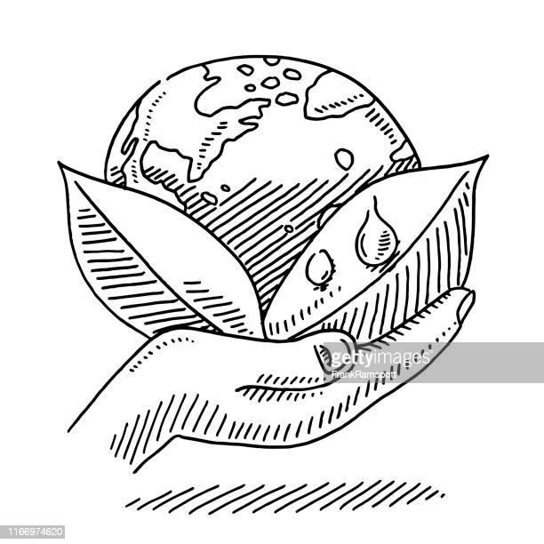 hand halten blätter und planet erde zeichnung - umwelt stock-grafiken, -clipart, -cartoons und -symbole