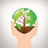 Hand  holding tree shaped world map with soil.