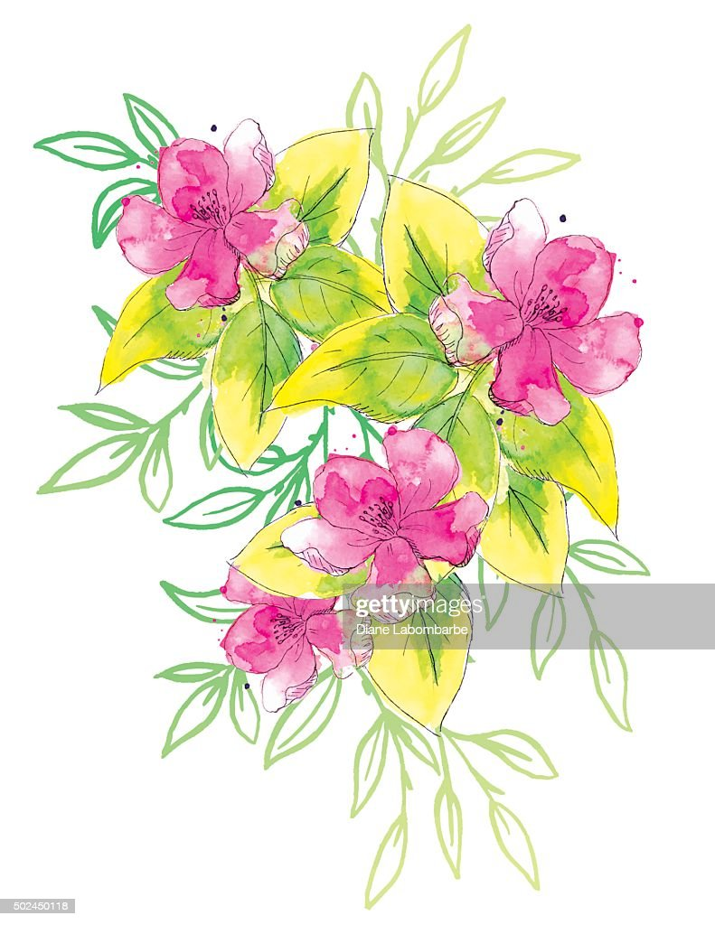 Hand Painted Watercolor Flowers Bouquet Vector Art Getty Images