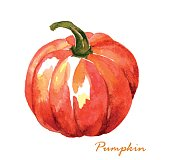 Hand painted watercolor pumpkin