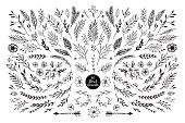 Hand sketched vector vintage elements ( laurels, frames, leaves, flowers, swirls, feathers). Wild and free. Perfect for invitations, greeting cards, quotes, blogs, posters.