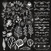 Hand-drawn floral big set with wild flowers, leaves, swirls, border