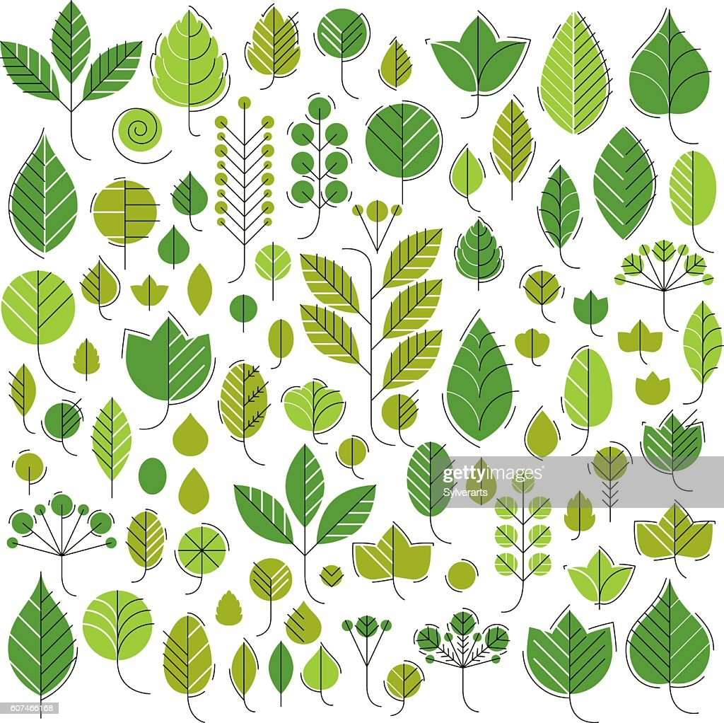 Hand-drawn illustration of simple tree leaves isolated. Green foleage