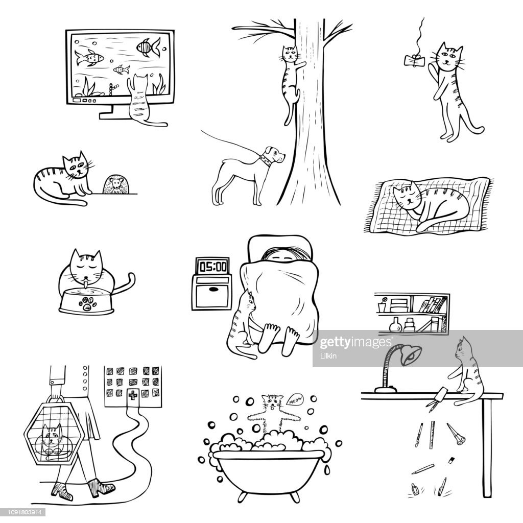 Hand-drawn vector cat