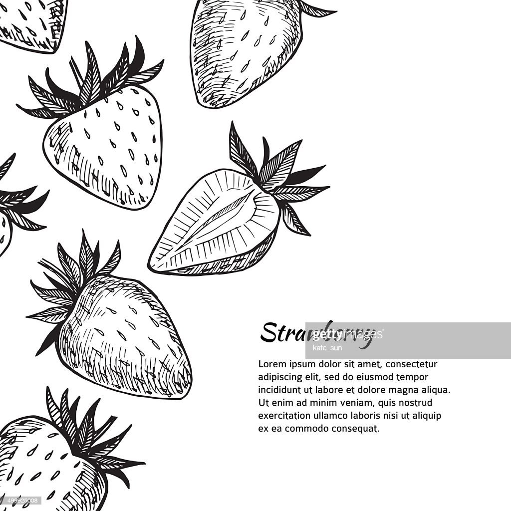 Hand-drawn vector illustration. Card or banner with strawberry.