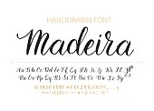 Handdrawn Vector Script font.  Brush style textured calligraphy cursive typefac