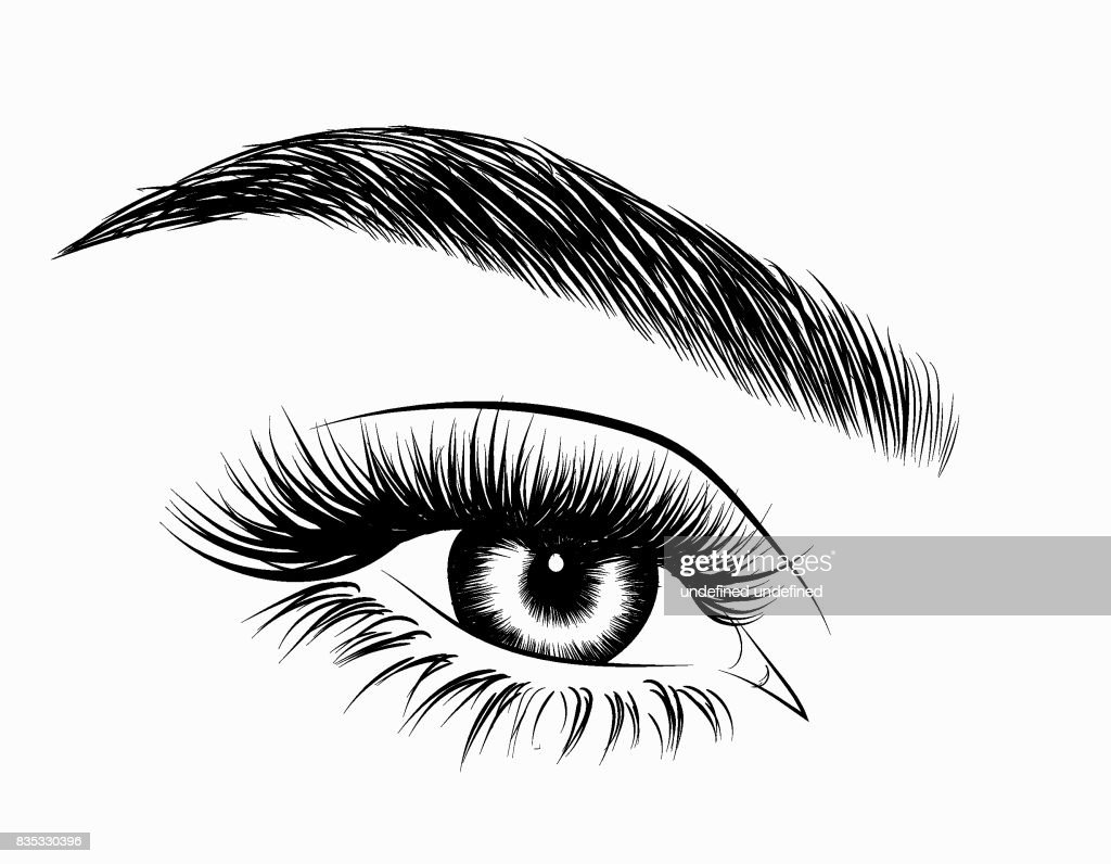 handdrawn womans eye with perfectly shaped eyebrows and full lashes