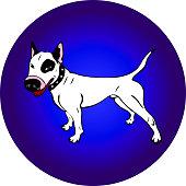 hand-painted white English bull terrier dog