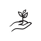Hands holding seedling in soil sketch icon