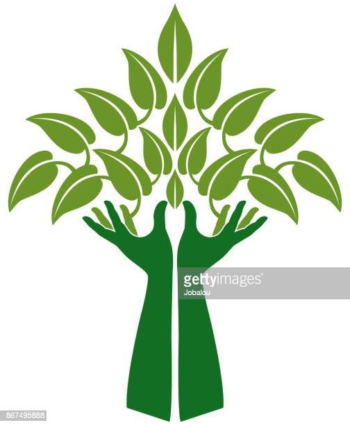 hands representing tree clip art - natural condition stock illustrations, clip art, cartoons, & icons