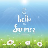 """Handwritten typography """"Say hello to summer"""". Floral background with chamomiles."""