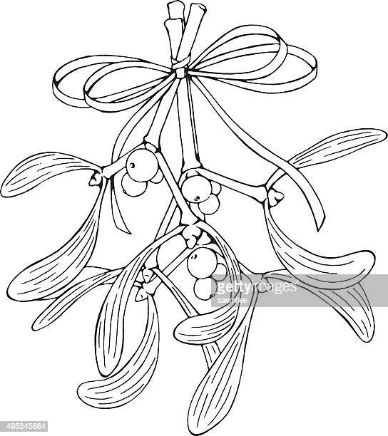 hanging mistletoe - mistletoe stock illustrations