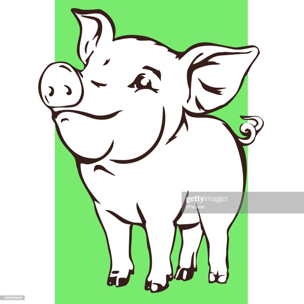 Happy baby pig vector illustration.