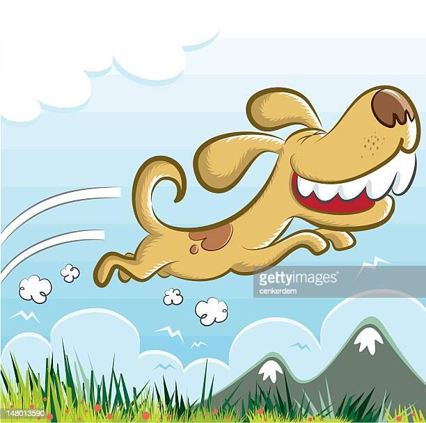 crazy Cão feliz a correr à natureza