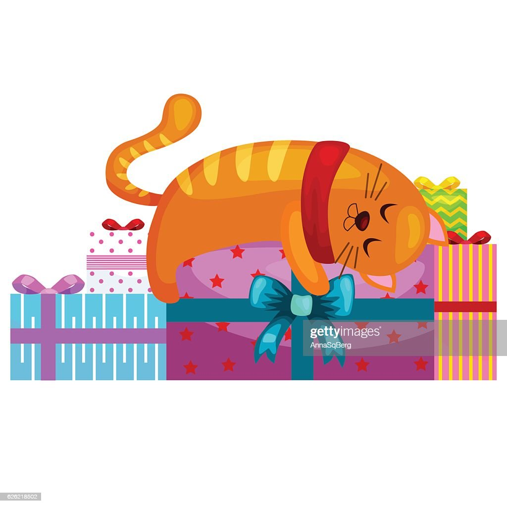 happy cute cat with christmas gifts, kitten   presents box, animal