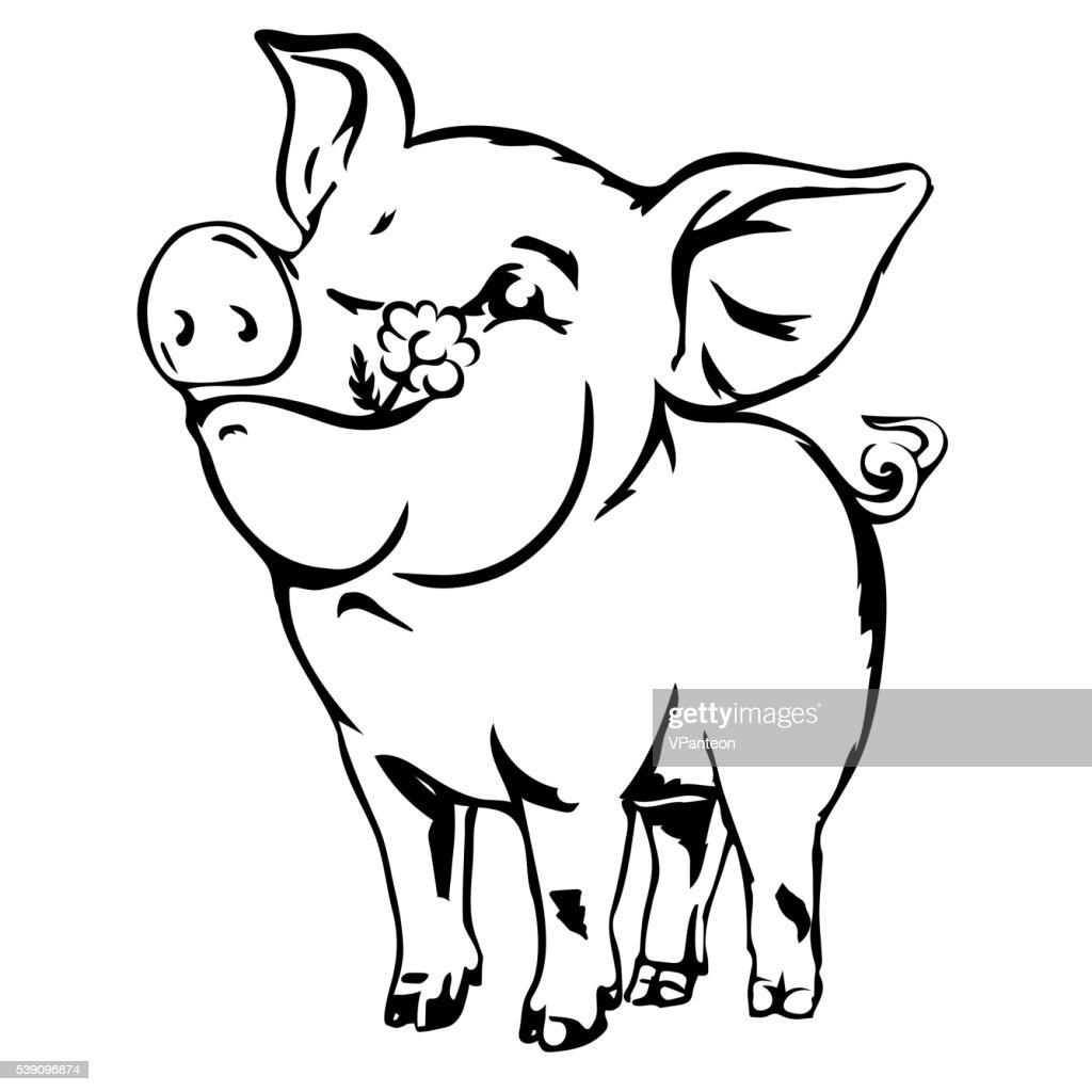Happy dirty pig vector sketch.