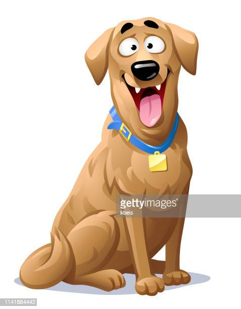happy labrador retriever - dog stock illustrations