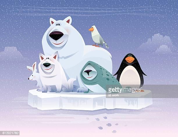 illustrations, cliparts, dessins animés et icônes de happy polar animals gathering - ours polaire