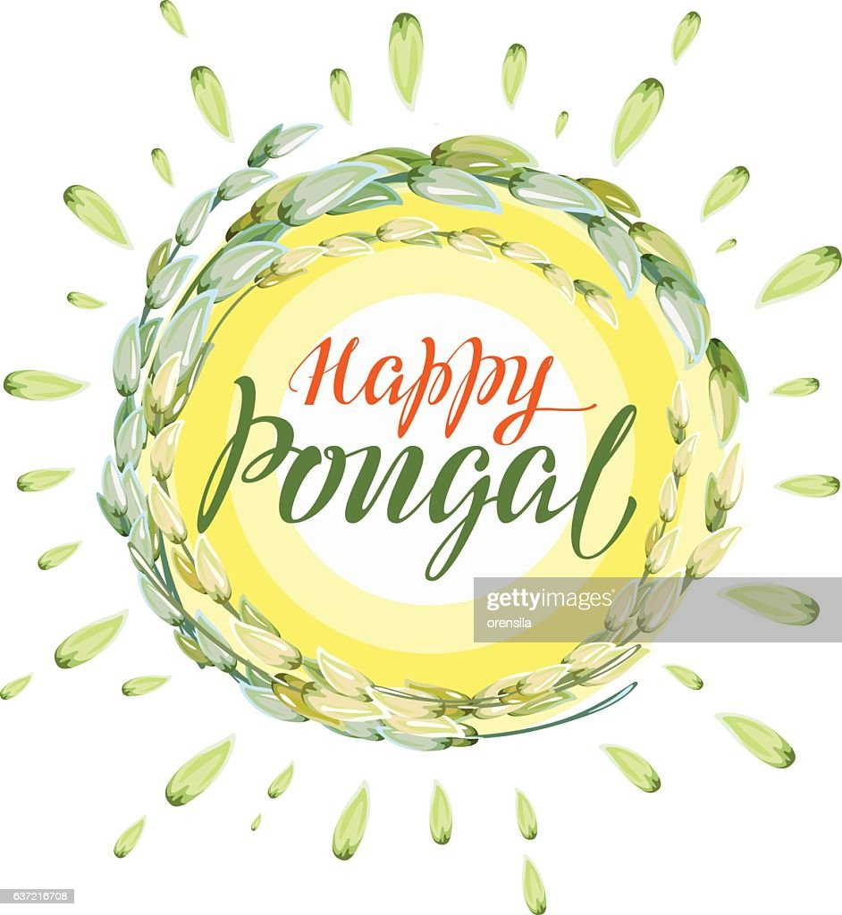 Happy Pongal lettering text. Harvest of rice and sun