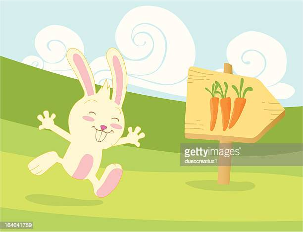 Happy rabbit running for carrots