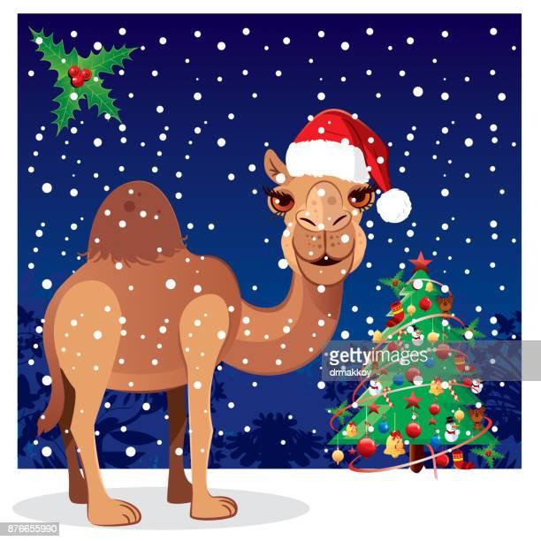 Hapy New Year, Camel