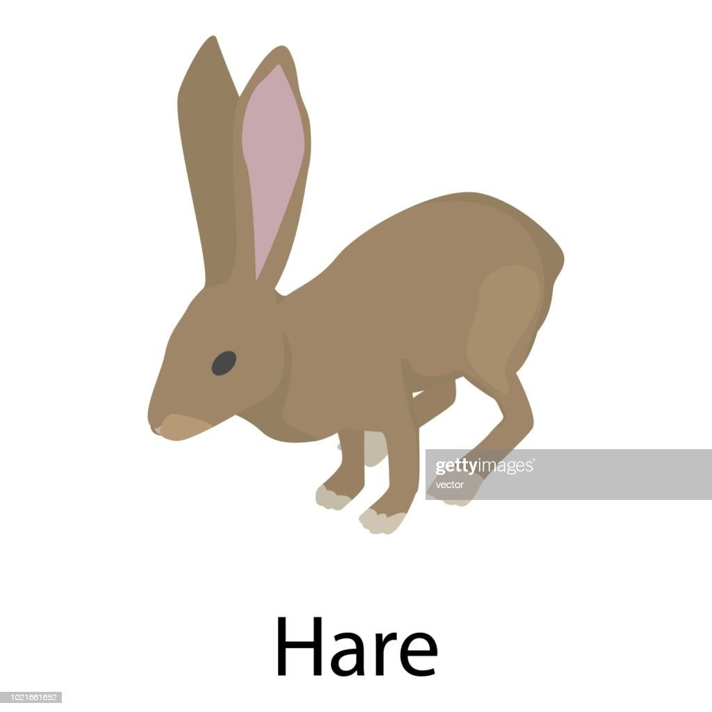 Hare icon, isometric style