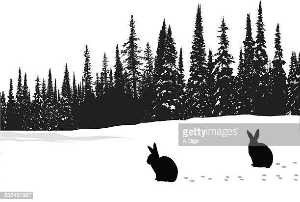 hares - coniferous tree stock illustrations, clip art, cartoons, & icons