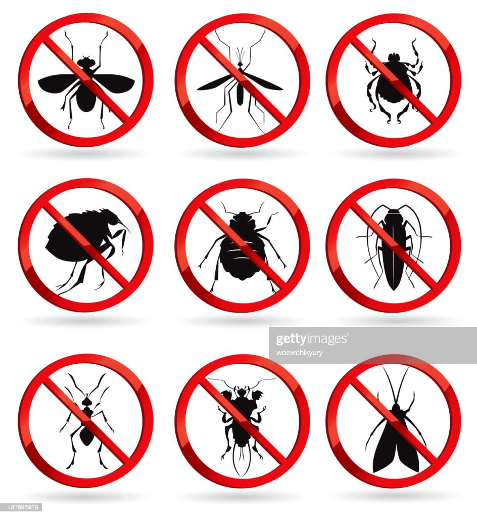 harmful insects