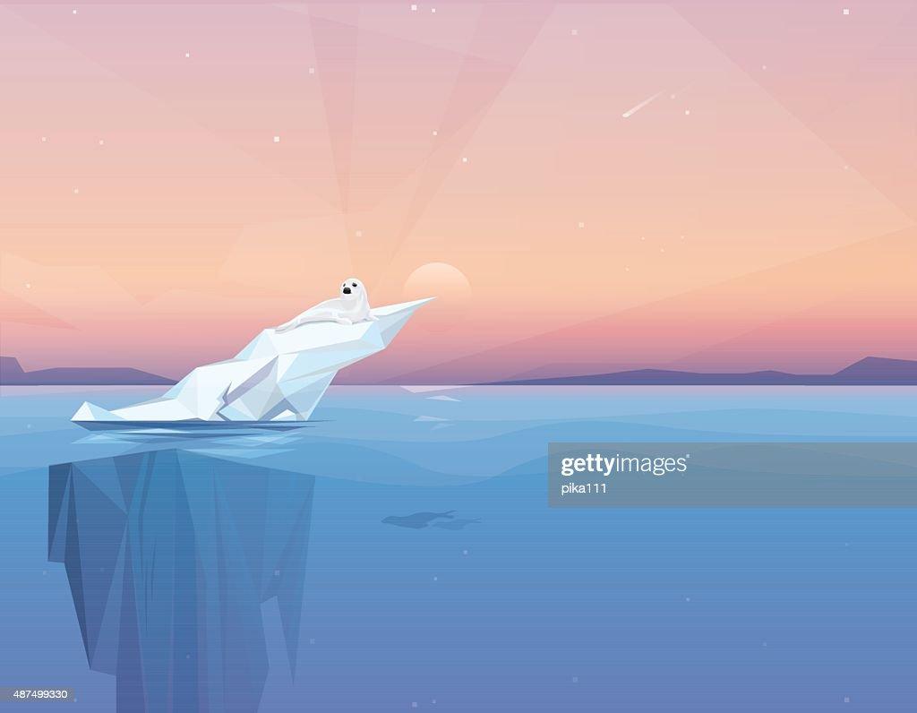 Harp seal on a melting iceberg