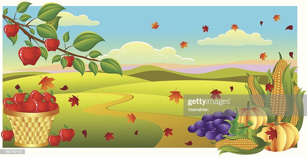 Harvest Time..