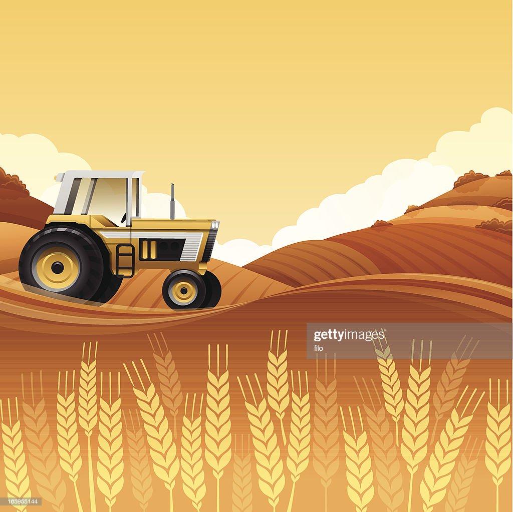 Harvest Tractor : Stock Illustration