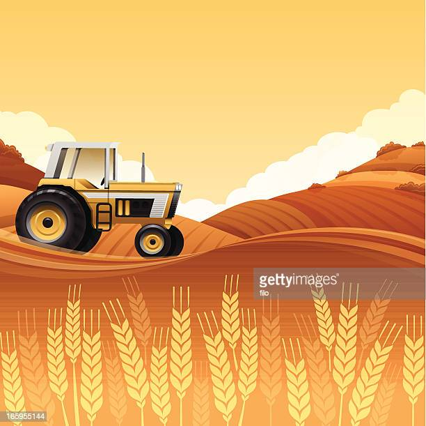 harvest tractor - tractor stock illustrations
