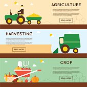 Harvesting, agriculture.