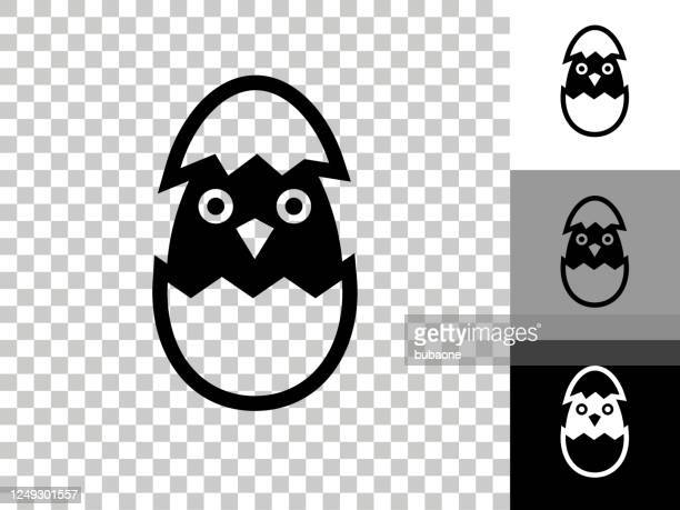 hatching bird icon on checkerboard transparent background - hatching stock illustrations