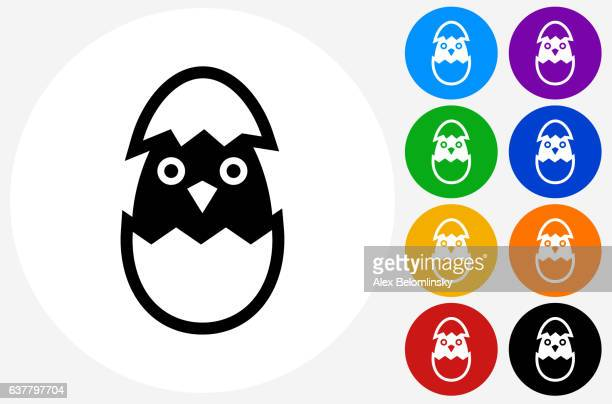 Hatching Bird Icon on Flat Color Circle Buttons