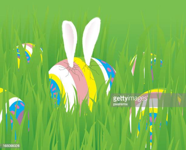 hatching easter egg - easter bunny costume stock illustrations, clip art, cartoons, & icons
