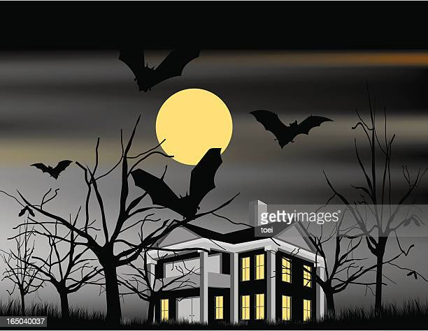 haunted house - bungalow stock illustrations, clip art, cartoons, & icons