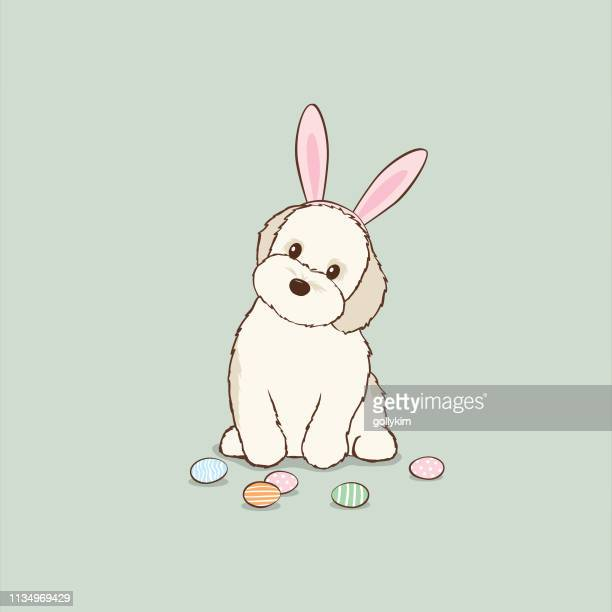 havanese puppy dog wearing easter bunny ears playing with easter eggs - easter bunny costume stock illustrations, clip art, cartoons, & icons