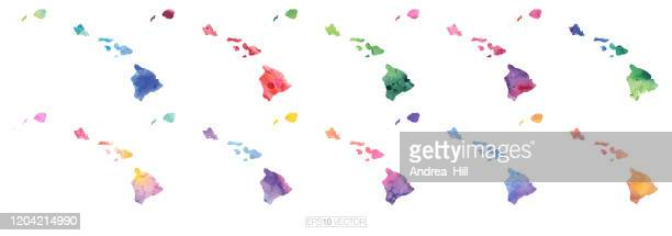 hawaii aquarell vektor karte illustration set - wasserfarbe auf papier stock-grafiken, -clipart, -cartoons und -symbole