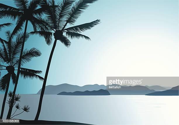 hawaiian air - big island hawaii islands stock illustrations