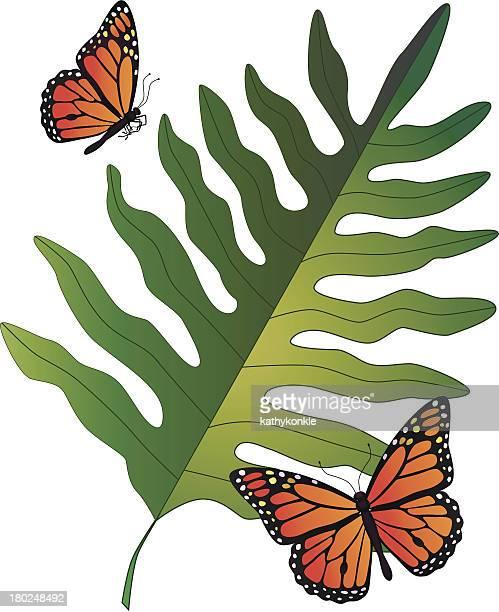 ilustraciones, imágenes clip art, dibujos animados e iconos de stock de helecho hawaiana y mariposas monarch - mariposa monarca