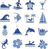 Hawaiian Icons - Pro Series