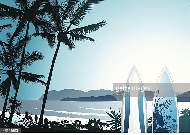 hawaiian surf - big island hawaii islands stock illustrations