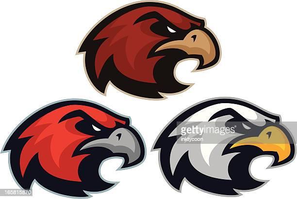 hawk eagle mascot heads - hawk bird stock illustrations, clip art, cartoons, & icons
