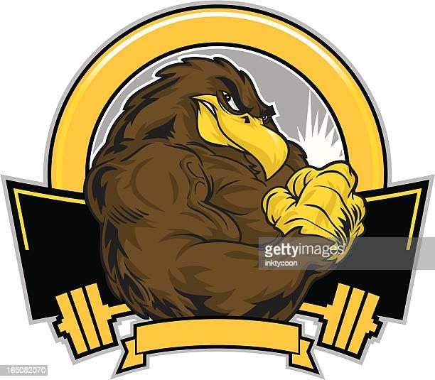 hawk flex - hawk bird stock illustrations, clip art, cartoons, & icons